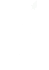 Idle Birch Logo